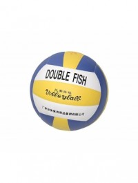 Double Fish Volleyball