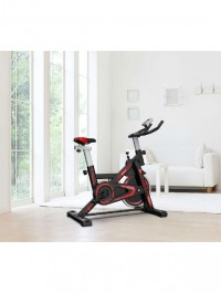 Indoor Exercise Fitness Spin Bike